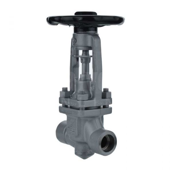 ARI FABA Plus Socket Weld Bellows Sealed Globe Valve