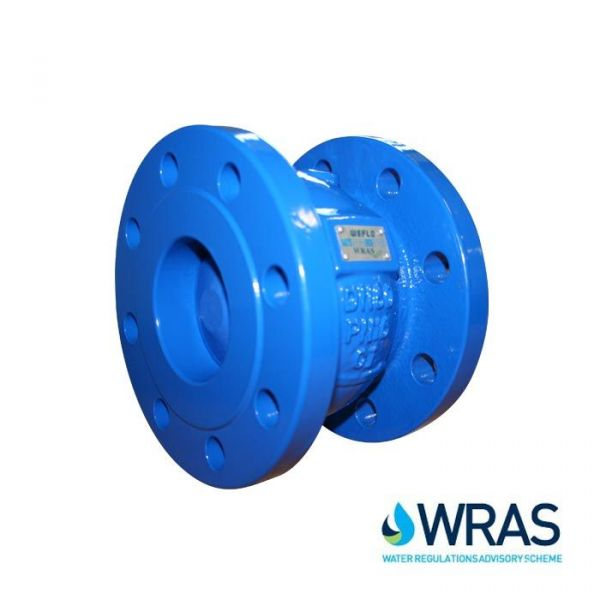 Cast Iron Flanged Axial Disc Check Valve