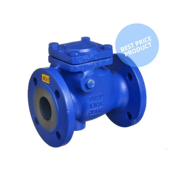 Cast Iron Swing Check Valve Flanged PN16 - EPDM Seat