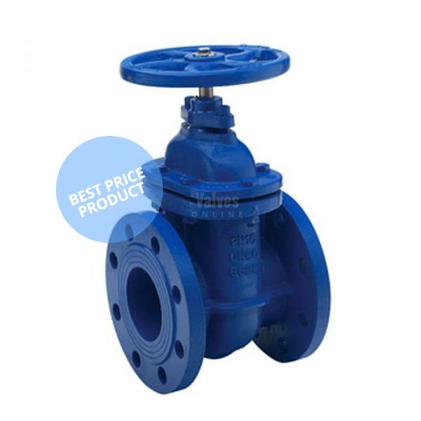 Cast Iron PN16 Economy Gate Valve