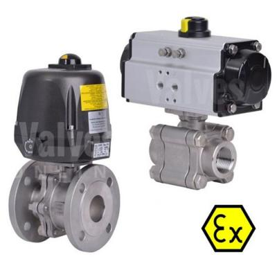 Actuated ATEX Valves